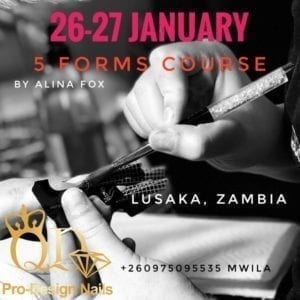 Five forms course Lusaka Zambia January 26 and 27 2019