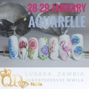 Aquarelle training Lusaka Zambia January 28 & 29 2019