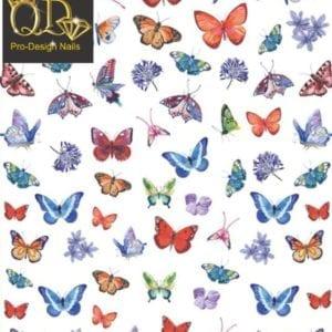 162dp QD/F Series Stickers